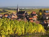 Blienschwiller, Alsatian Wine Route, Alsace Region, Bas-Rhin, France Photographic Print by Walter Bibikow