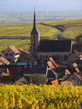 Blienschwiller, Alsatian Wine Route, Alsace Region, Bas-Rhin, France Photographic Print by Walter Bibikow