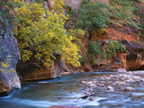 The Virgin River Flows Through the Narrows, Zion National Park, Utah, Usa Photographic Print by Dennis Flaherty
