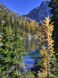 Blue Lake with Golden Larch Trees, Wenatchee National Forest, Washington, Usa Photographic Print by Jamie & Judy Wild