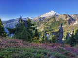 Mt. Baker from Kulshan Ridge at Artist's Point, Heather Meadows Recreation Area, Washington, Usa Photographic Print by Jamie & Judy Wild