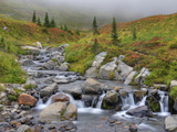 Edith Creek, Mt. Rainier National Park, Washington, Usa Photographic Print by Jamie & Judy Wild