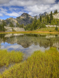 Alpine Tarn and Mount Daniel, Alpine Lakes Wilderness, Washington, Usa Photographic Print by Jamie & Judy Wild