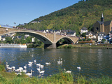 Bridge across Mosel River with Swans, Cochem, Rhineland-Palatinate, Germany Photographic Print by Tom Haseltine