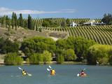 Kayakers and Vineyard, Bannockburn Inlet, Lake Dunstan, Central Otago, South Island, New Zealand Photographic Print by David Wall