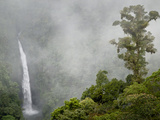 Cloud Forest in Mountains Near La Paz, San Fernando Waterfall, Costa Rica Photographic Print by Rob Sheppard