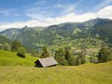 Alpine Pasture Enar Grindelwald Valley Below Eiger, Jungfrau Region, Switzerland Photographic Print by Michael DeFreitas