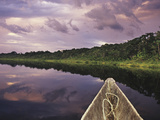 Napo Wildlife Center, Yasuni National Park, Amazon Basin, Ecuador Photographic Print by Christopher Bettencourt