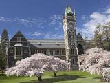 University of Otago, Dunedin, South Island, New Zealand Photographic Print by David Wall