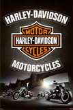 Harley Davidson - Leather Posters