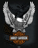 Harley Davidson - Eagle Print
