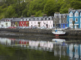Waterfront, Tobermory, Isle of Mull, Scotland Photographic Print by David Wall