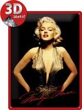 Marilyn Monroe Plaque en métal