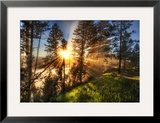 Morning. Coffee. Yellowstone. Fog. Framed Photographic Print by Trey Ratcliff
