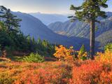 View from Kulshan Ridge, Heather Meadows Recreation Area, Washington, Usa Photographic Print by Jamie & Judy Wild