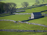 Farmland, Stone Walls and Buildings, Near Malham, Yorkshire Dales, North Yorkshire, England Photographic Print by David Wall