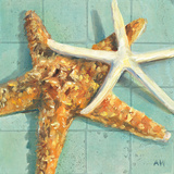 Starfish I Posters by Alyssa Watters