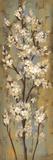 Gren fra mandeltræ II Poster af Silvia Vassileva