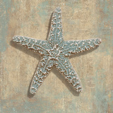 Aqua Starfish Prints by Caroline Kelly