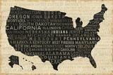 USA V Posters by Pela Studio
