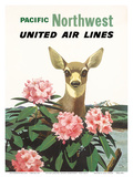 United Air Lines: Pacific Northwest, c.1960s Posters by Stan Galli