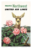 United Air Lines: Pacific Northwest, c.1960s Prints by Stan Galli