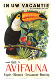 Avifauna Bird Park: Holland c.1951 Print by Guust Hens
