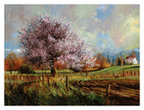 Spring Blossoms Prints by Larry Winborg