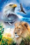 Skabelse Posters
