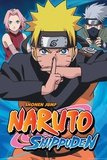 Naruto Group Posters