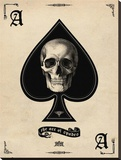 Ace of Spades Stretched Canvas Print