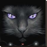 Spiral-Magical Cat Reproduction transférée sur toile