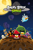 Angry Birds-Space Poster