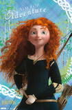 Brave - Merida Print