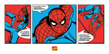 Spiderman-Triptych Poster