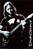 Pink Floyd (David Gilmour) Music Poster Print Posters
