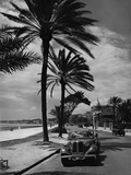 Beach Promenade in Nice, 1937 Photographic Print by  Scherl