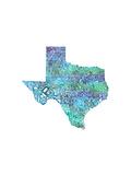 Typographic Texas Cool Premium Giclee Print by  CAPow