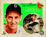 Ted Williams 2012 Studio Plus Photographie