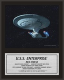 Star Trek - Enterprise NCC-1701-D Prints