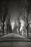 Old Country Road in Tyrol, 1931 Photographic Print by Scherl