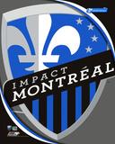 Montreal Impact 2011 Team Logo Photo