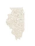 Typographic Illinois Beige Premium Giclee Print by  CAPow