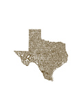 Typographic Texas Brown Premium Giclee Print by  CAPow