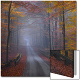Misty Road Print by  Strand