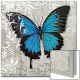 Blue Butterfly II Print by Hopfensperger