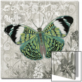 Green Butterfly I Poster by Hopfensperger