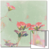 Romantic Meadow Poster von Lambert 