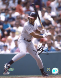 Harold Baines Chicago White Sox Photo