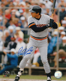 Darrell Evans Detroit Tigers Autographed Photo (Hand Signed Collectable) Photo